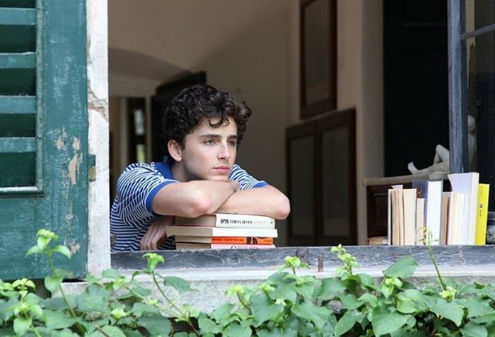 Luca Guadagnino discusses 'Call Me By Your Name' sequel after receiving now-completed novel
