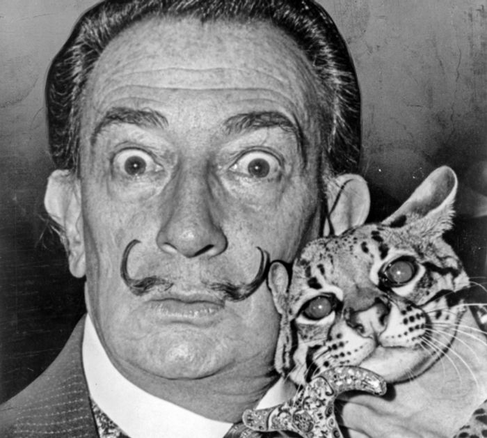 10 Salvador Dalí artworks stolen from a Stockholm gallery