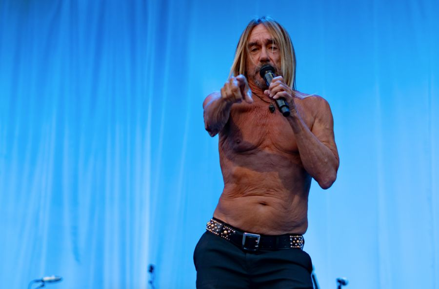 Iggy Pop named his 12 favourite albums of all time