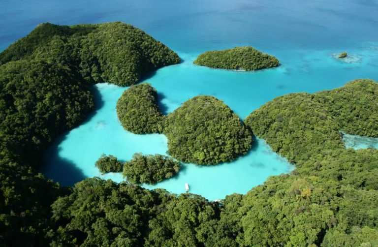 Palau introduce sunscreen ban after chemicals are found to harm coral reefs