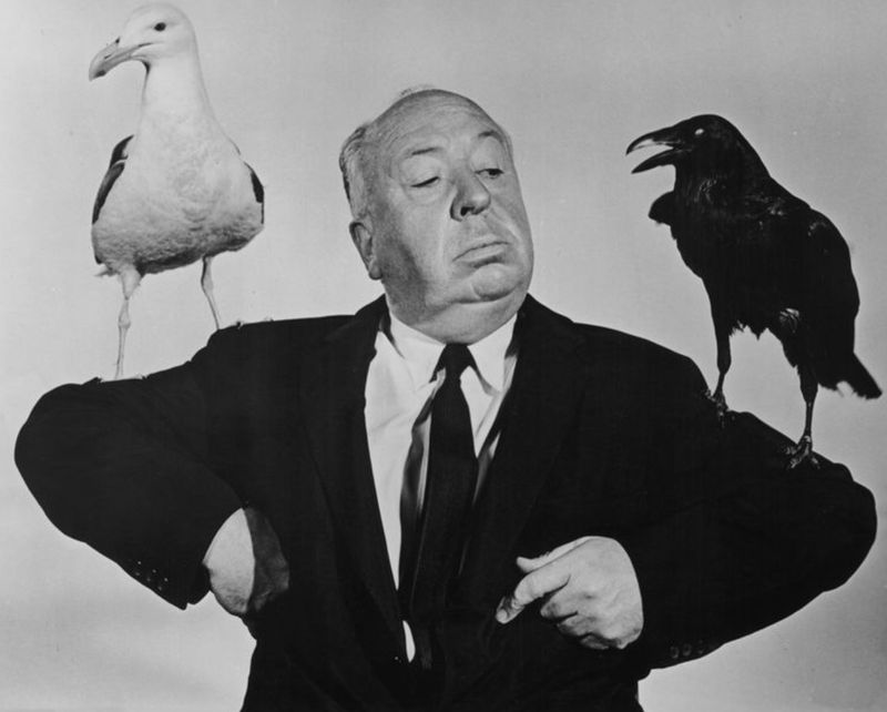The insane truth about Alfred Hitchcock's filming technique on 'The Birds'